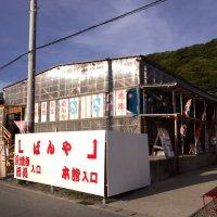 保田漁港直営 食事処ばんや